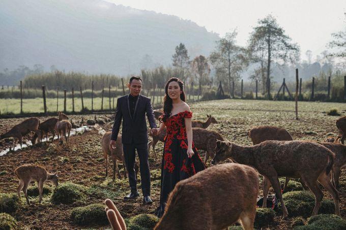 Prewedding Grisela & Hendra by ALLANO PHOTOGRAPHY - 009