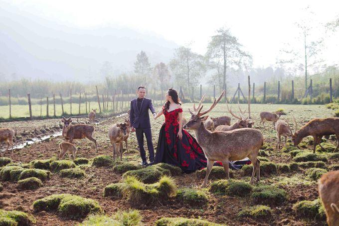 Prewedding Grisela & Hendra by ALLANO PHOTOGRAPHY - 002