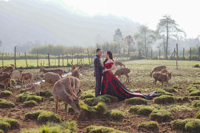 Prewedding Grisela & Hendra by ALLANO PHOTOGRAPHY - 003