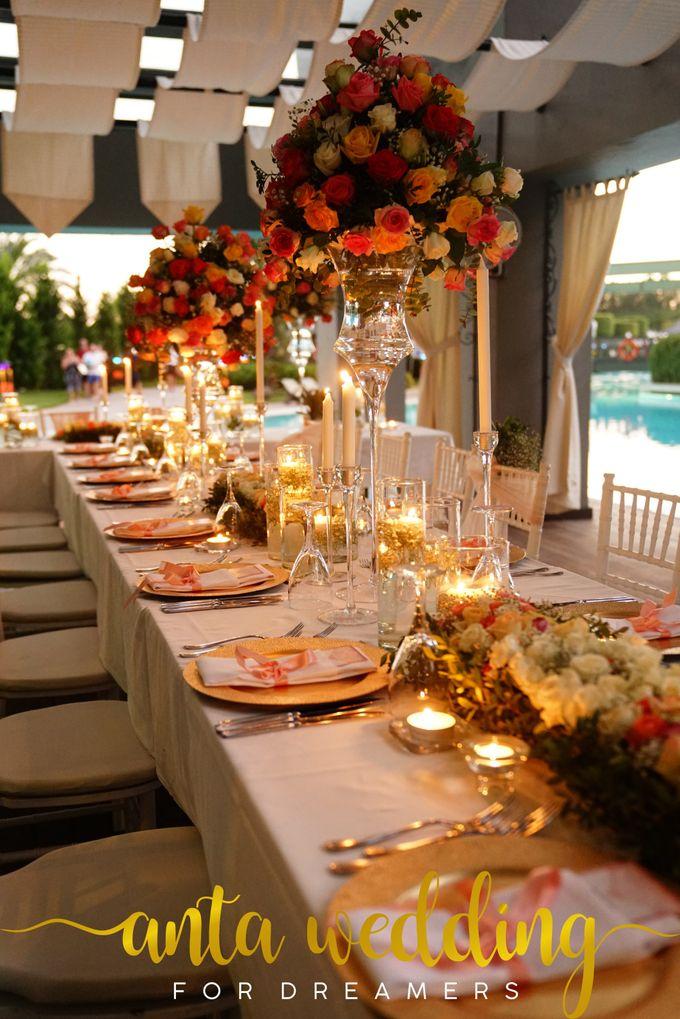 Wedding of British Couple by Anta Organization Wedding & Event Planner - 021