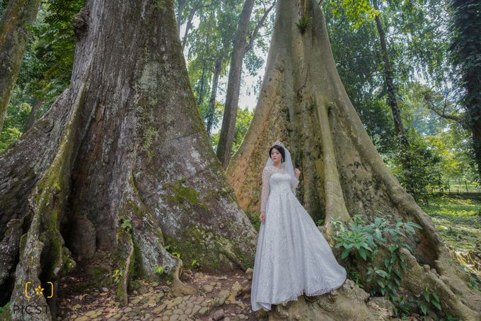 Photoshoot prewedding gown by Rosegold - 001