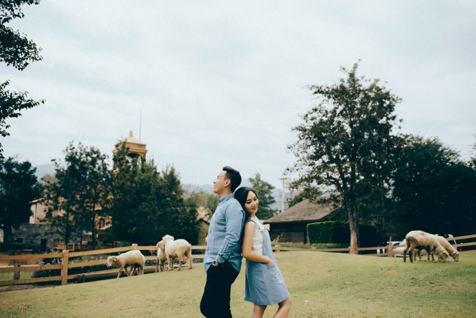 PRE WEDDING by Thousand Pictures   Photo & Video - 006