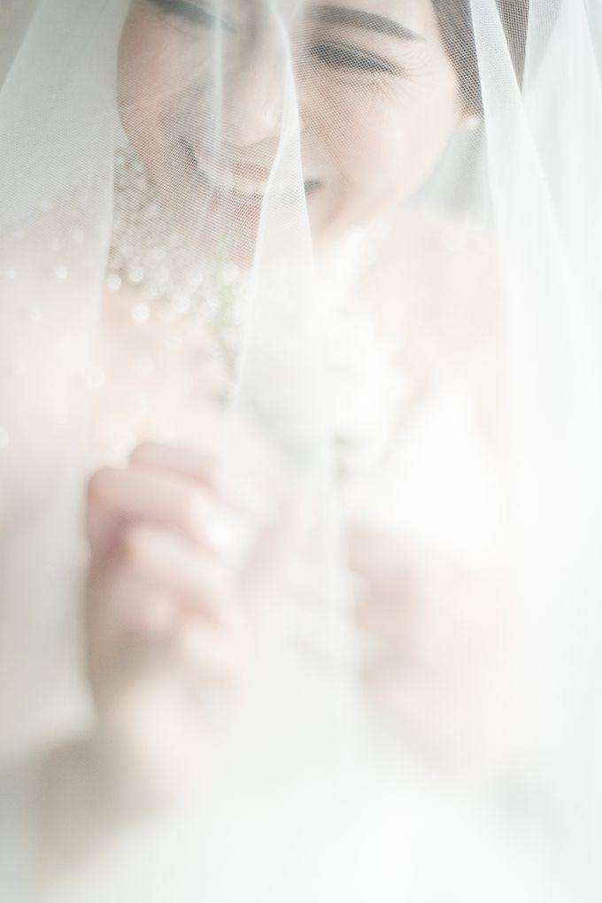 Albert ∞ Nesya by VOI&VOX Photography - 024