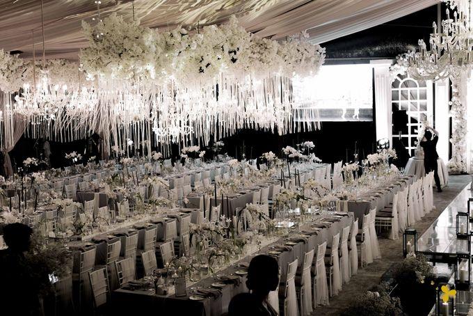 Classic Elegant by Designmill co. - 038