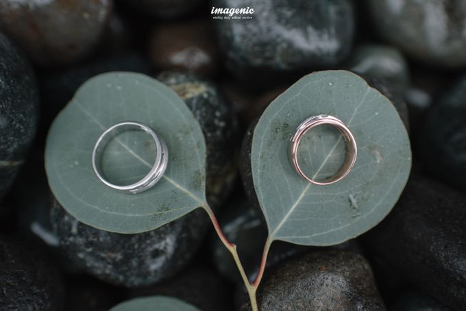 DWI & PUTRA WEDDING by Imagenic - 008