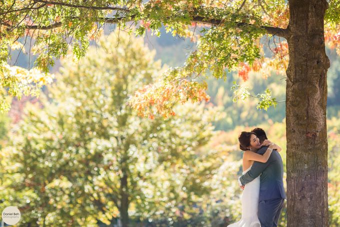 New Zealand pre-wedding by Daniel Beh Photography - 010