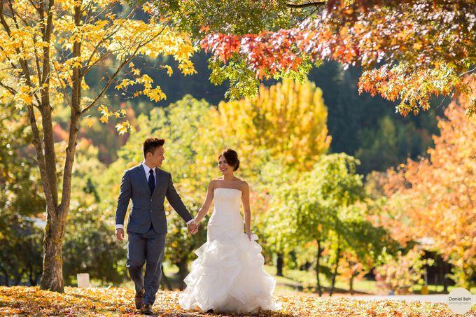 New Zealand pre-wedding by Daniel Beh Photography - 011