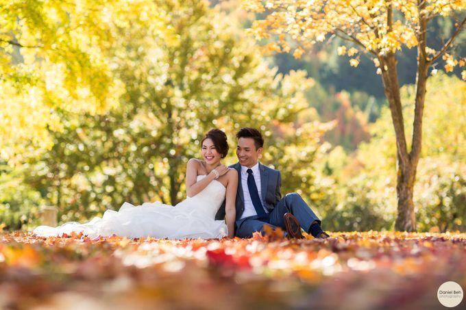 New Zealand pre-wedding by Daniel Beh Photography - 001