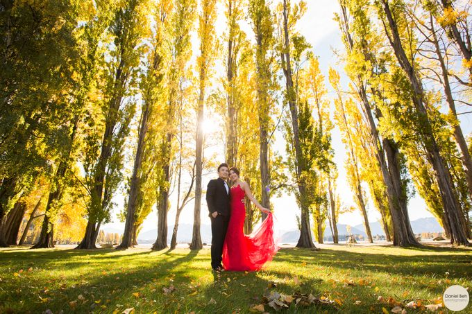 New Zealand pre-wedding by Daniel Beh Photography - 016