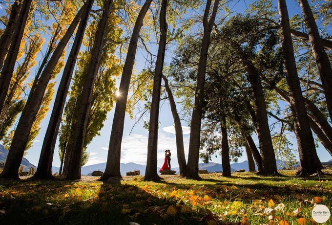 New Zealand pre-wedding by Daniel Beh Photography - 018