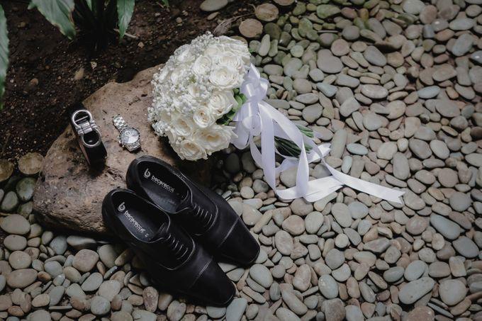 Ben & Joanne Wedding by Little Collins Photo - 015
