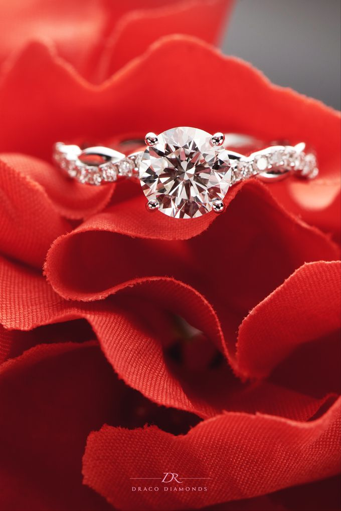 Classic Entwine Engagement Ring by Draco Diamonds - 005