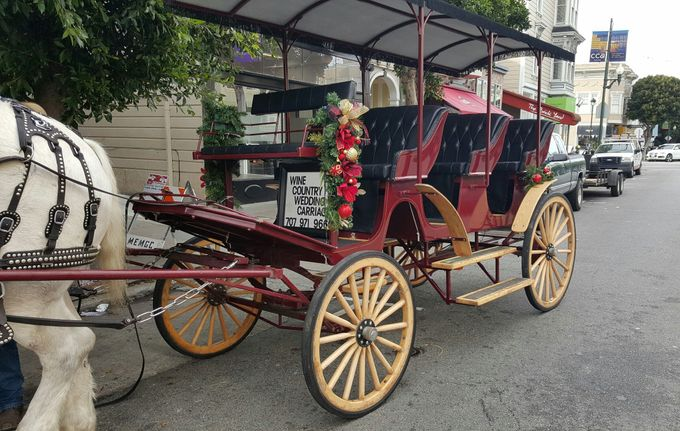 Wine Country Weddings by Wine Country Wedding Carriages - 009