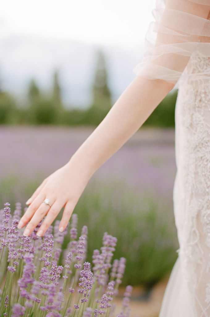 Three day Pre-Wedding shoot in New Zealand by Feather and Stone Photography - 012