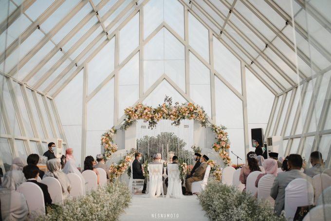 Widy & Ano Wedding Decoration by Valentine Wedding Decoration - 006