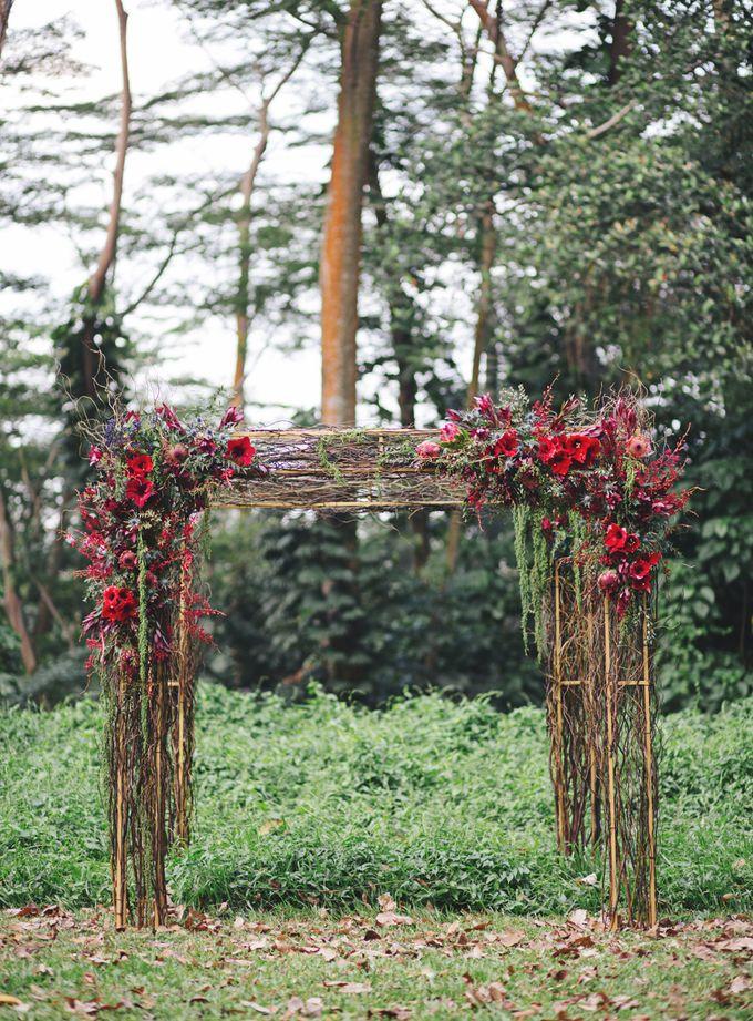 Elopement by Everitt Weddings - 034