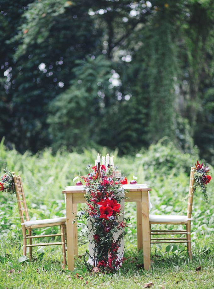 Elopement by Everitt Weddings - 038