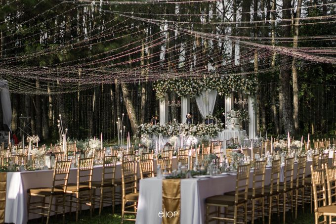 The Greek Goddess Themed Wedding of Edo and Marshella by Elior Design - 010