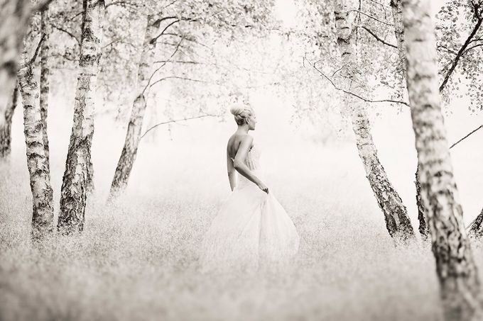 PHOTOGRAPHY AND FINE ART STORIES. by Erika Gerdemark Photography - 042