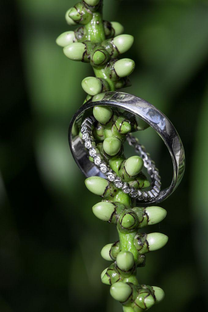 Jawelry shoot by Bali Wedding Films - 006