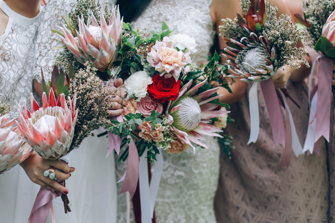 Protea Bloom  by Everything With Crates - 002
