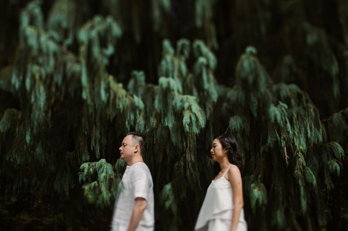 Exquisite Lake & Forest Prewedding of Evita & Benny in Bali by fire, wood & earth - 012
