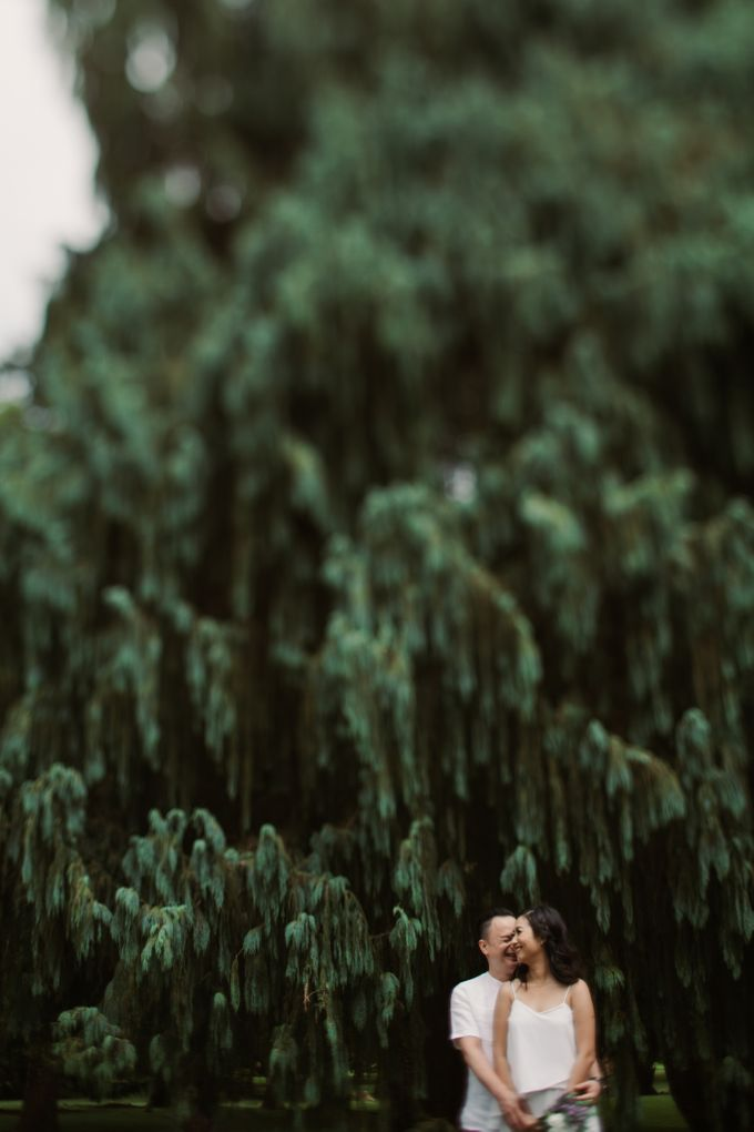 Exquisite Lake & Forest Prewedding of Evita & Benny in Bali by fire, wood & earth - 017