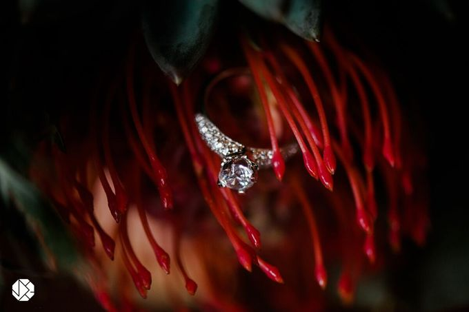 Engagement Rings Fall Bridal Editorial by Ocampo's Fine Jewellery - 004