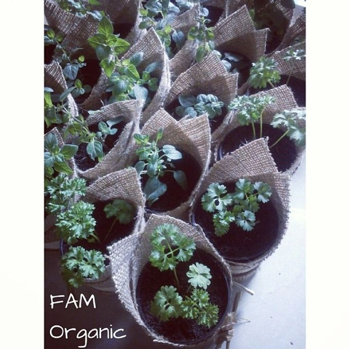 Fiana & Pramana Wedding-9 Februari 2014 by FAM Organic - 001
