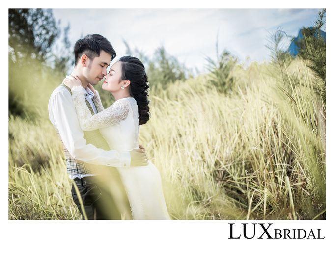 Jeffrey & Owenna by Lux Bridal Sdn Bhd - 003