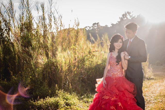 Prewedding Tama Sofiani by van photoworks - 008