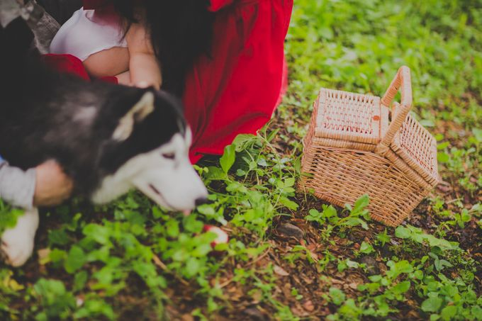 Red Riding Hood and The Hunter by Cravt Photo Props - 002