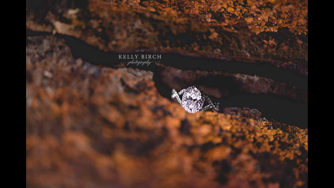 Highlight Gallery 2015 by Kelly Birch Photography - 003