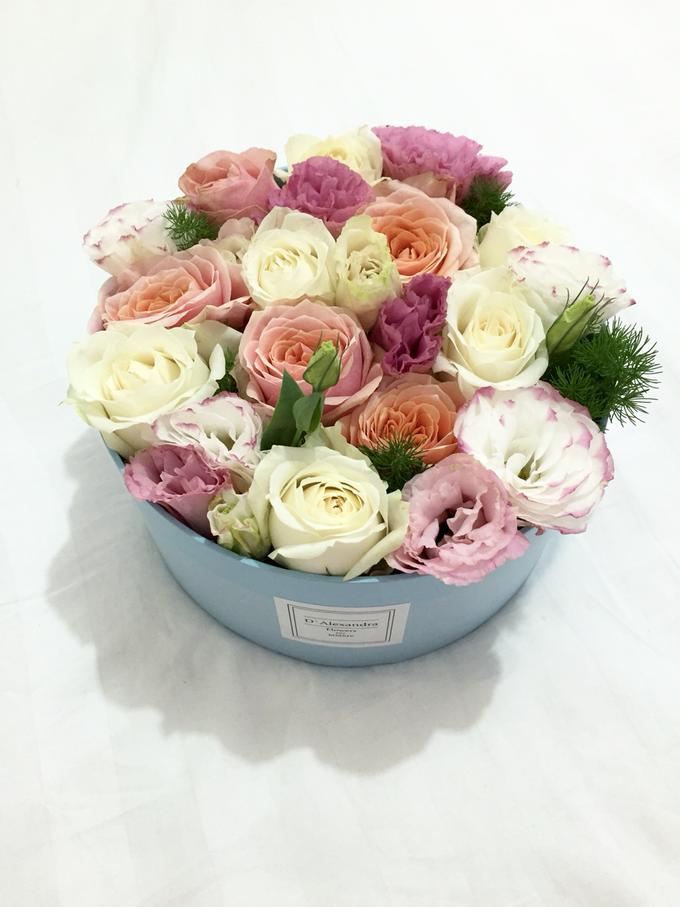 Floral Journal  by D'Alexandra Flowers - 013