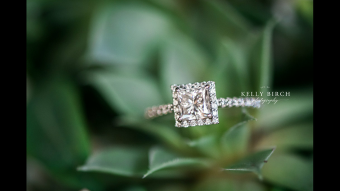 Highlight Gallery 2015 by Kelly Birch Photography - 010