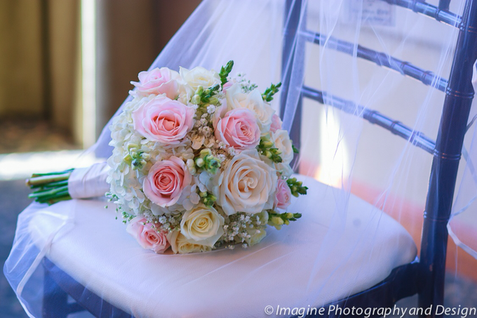My photography by Imagine Photography & Design - 028