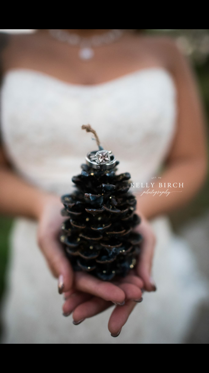 Highlight Gallery 2015 by Kelly Birch Photography - 021
