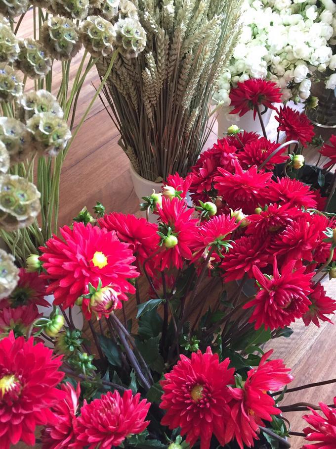 Floral Journal  by D'Alexandra Flowers - 046