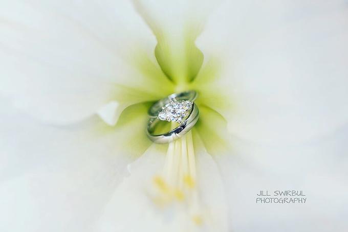 Portfolio by Jill Swirbul Photography - 002