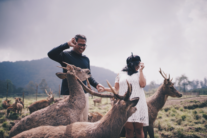 Yossep & Siska prewedding by Ace of Creative - 005