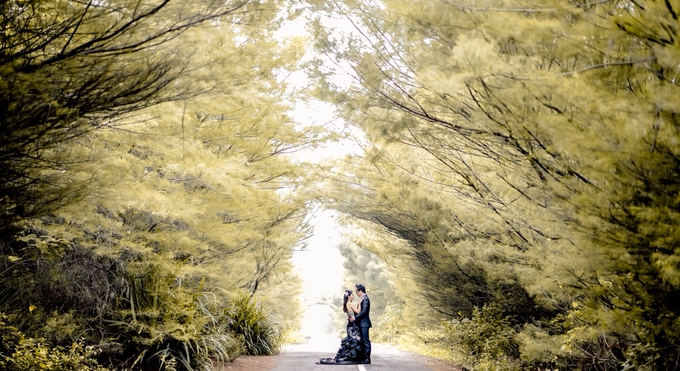 Steven + Irene by Blooming Box Photography - 010