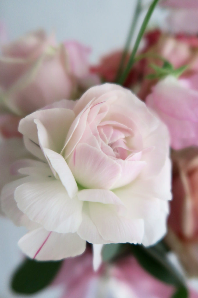 Bridal Series by D'Alexandra Flowers - 018