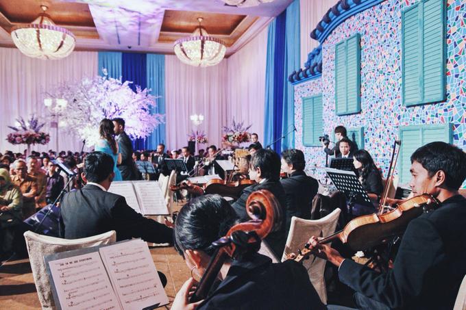 BEBOP Light Orchestra by BEBOP Entertainment - 001