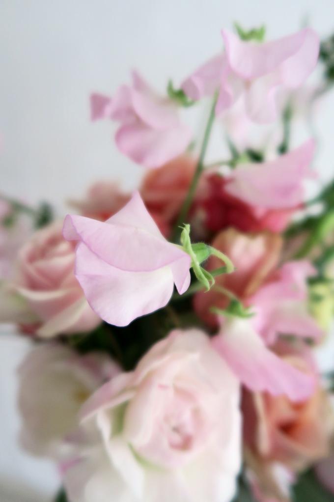 Floral Journal  by D'Alexandra Flowers - 028