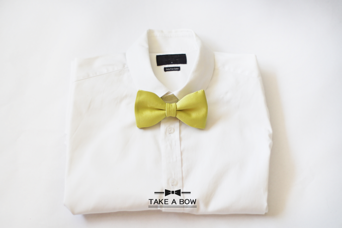 [NEW] TIE SET WITH SUSPENDERS by Take A Bow Tie - 001
