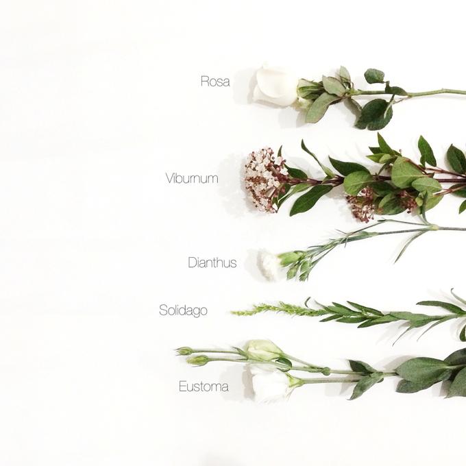 Flower Crown by Fleur de Lis - 005