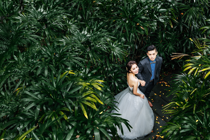 M&L pre wedding shoot by Cocoon makeup and hair - 002