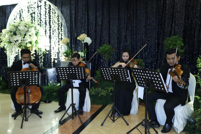 29.07.17 ORANGE Light Orchestra by ORANGE Music Management - 001