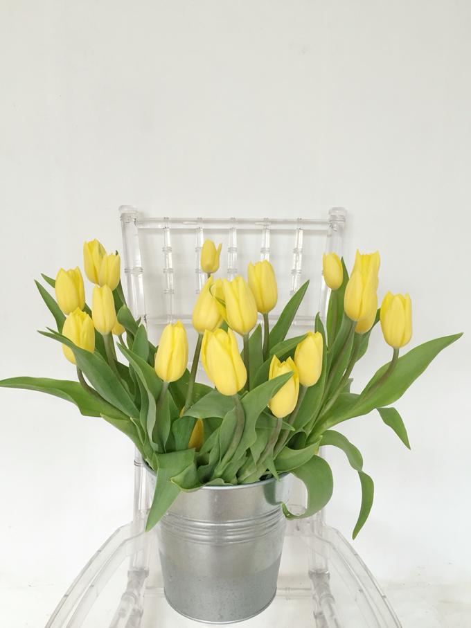 Floral Journal  by D'Alexandra Flowers - 005