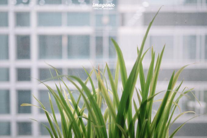 Pernikahan adat jawa dengan nuansa hijau di dalam ballroom by Imagenic - 001